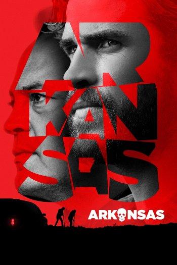 Arkansas dvd release poster
